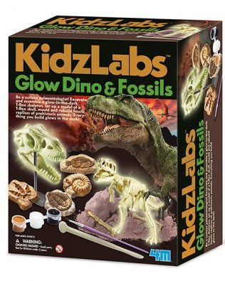 Fósiles de Dinosaurio que Brillan en la Oscuridad – 4M