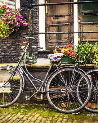 Rompecabezas: Bicicletas en Amsterdam – PINTOO