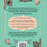 EL LIBRO DE LAS MENTIRAS - V&R EDITORAS
